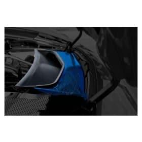 2014-2019 C7 Corvette Custom Painted Perforated Vent Tube Cover
