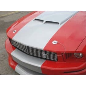2005-2019 Ford Mustang Hood Pin Appearance Package